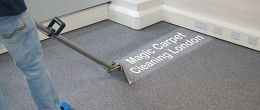 Portable Cleaning Machines or Professional Carpet Cleaners?
