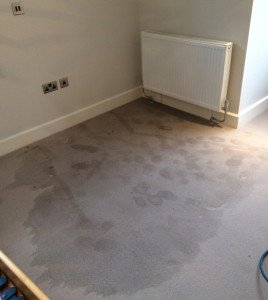 From one of our projects in Beckenham: before