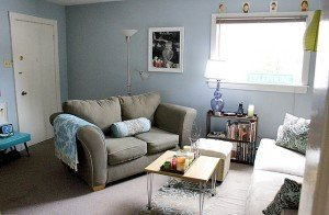 upholstery items, and carpets